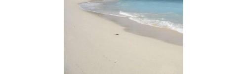 sable quartz pour aquarium