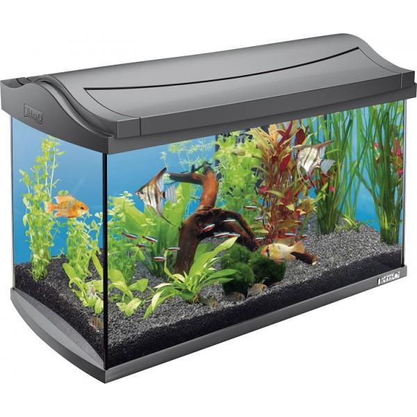 Aaquaray28 tetra aquarium aquaart 60 litres for Aquarium en solde